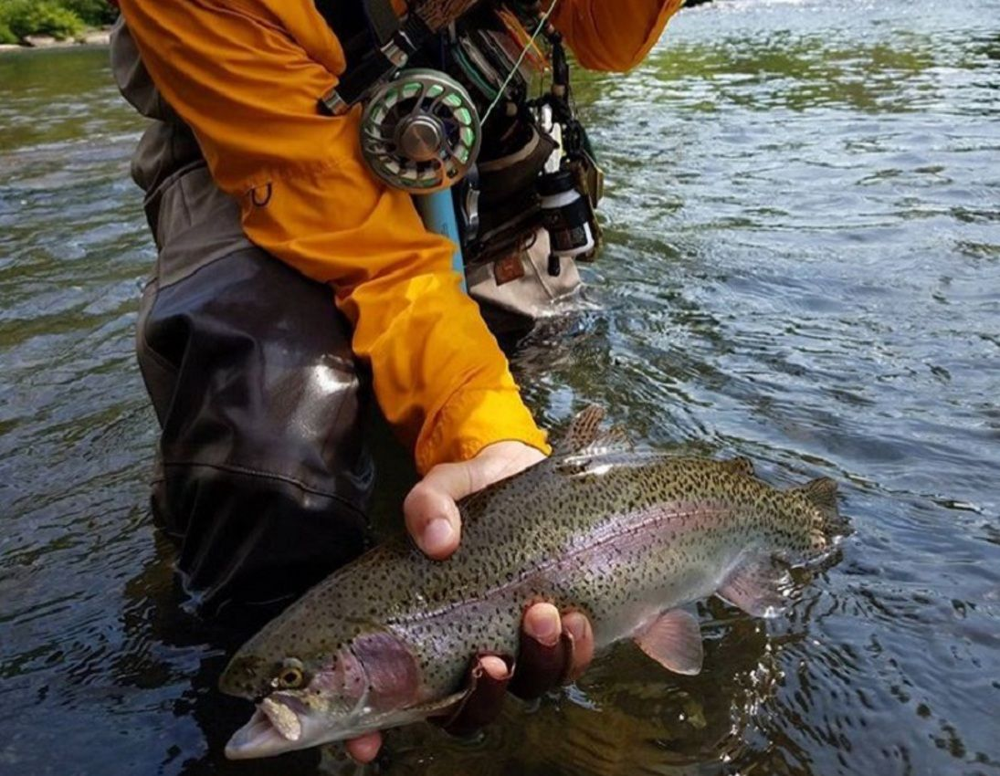 Fish this pa pennsylvania fishing guides hotspots and for Trout fishing pa