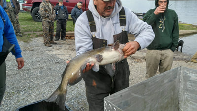 Catfish fishing in PA