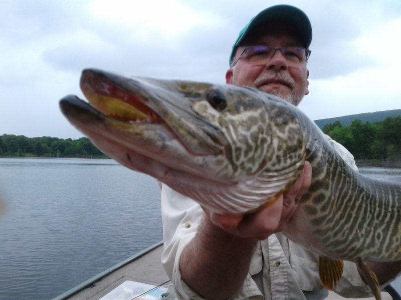 Pennsylvania Fly Fishing Guide