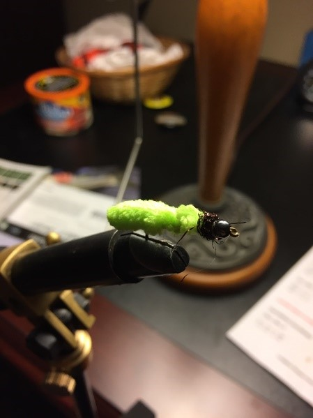 Green Weenie for Trout Fishing
