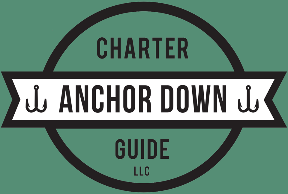 Anchor Down Charter Guide