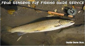 Four Seasons Fly Fishing Guide Service