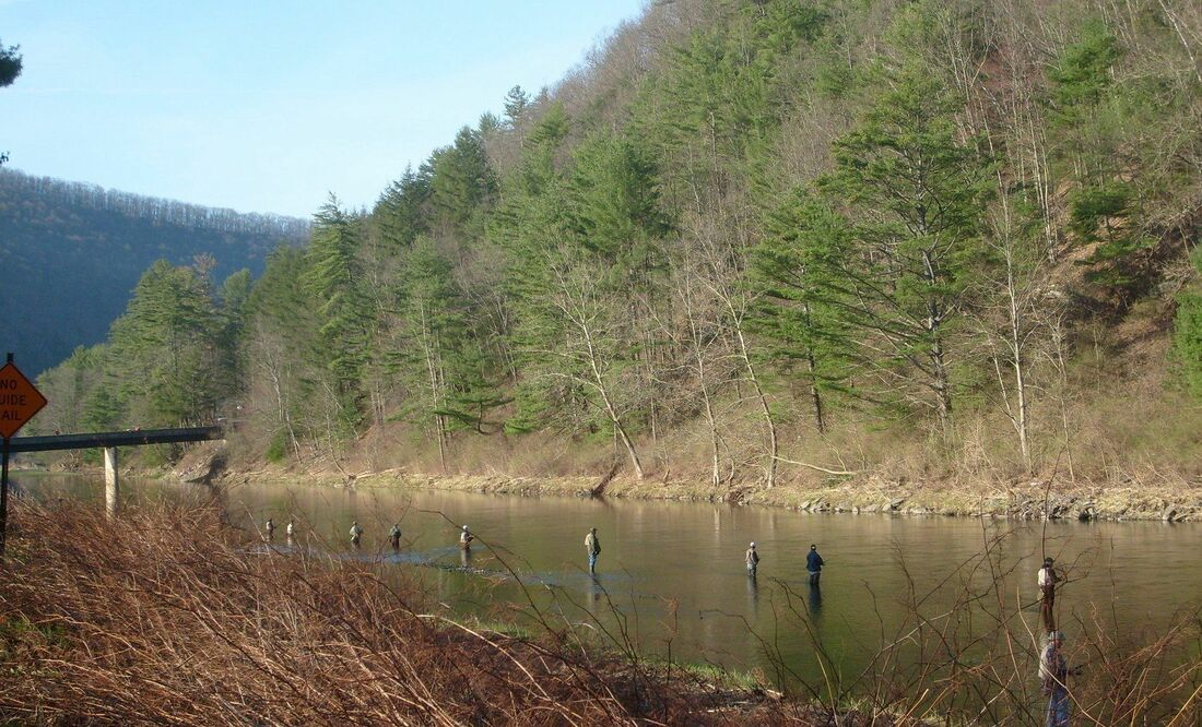 Trout Fishing in Pennsylvania - FISH THIS PA